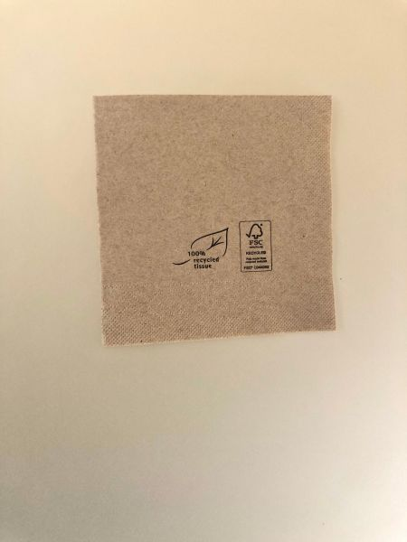Papir, Serviet 3lags natur m logo print, 250x250mm, 1/4 fals - 250 stk pk